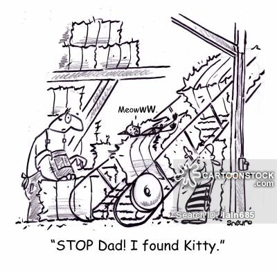 'STOP dad! I found Kitty.'
